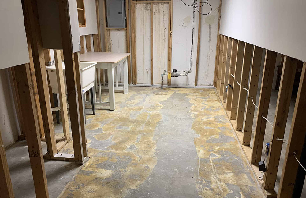 After-Mold in Macomb